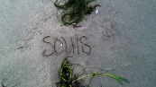 80293-2011-07-24_07-58-33_9642